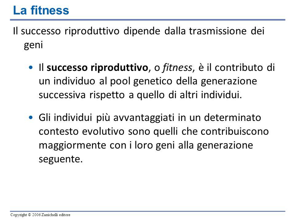 Copyright © 2006 Zanichelli editore Il successo riproduttivo dipende dalla trasmissione dei geni Il successo riproduttivo, o fitness, è il contributo