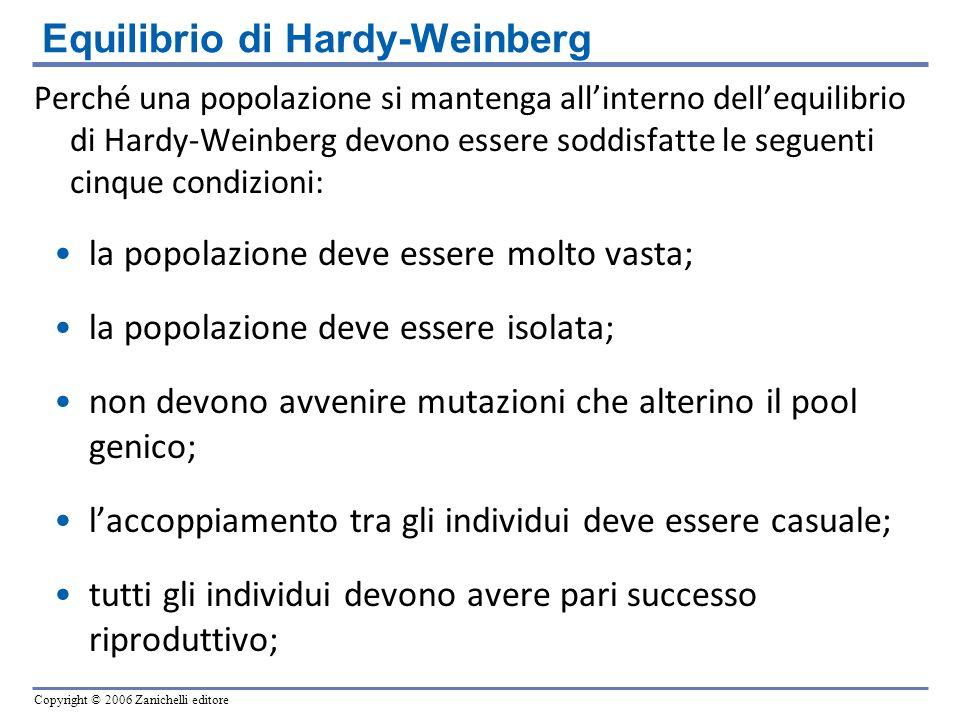 Copyright © 2006 Zanichelli editore Perché una popolazione si mantenga allinterno dellequilibrio di Hardy-Weinberg devono essere soddisfatte le seguen