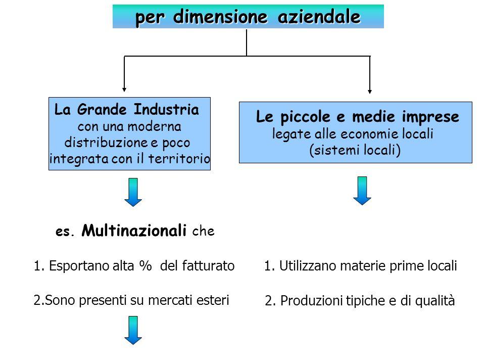 Le piccole e medie imprese legate alle economie locali (sistemi locali) La Grande Industria con una moderna distribuzione e poco integrata con il terr