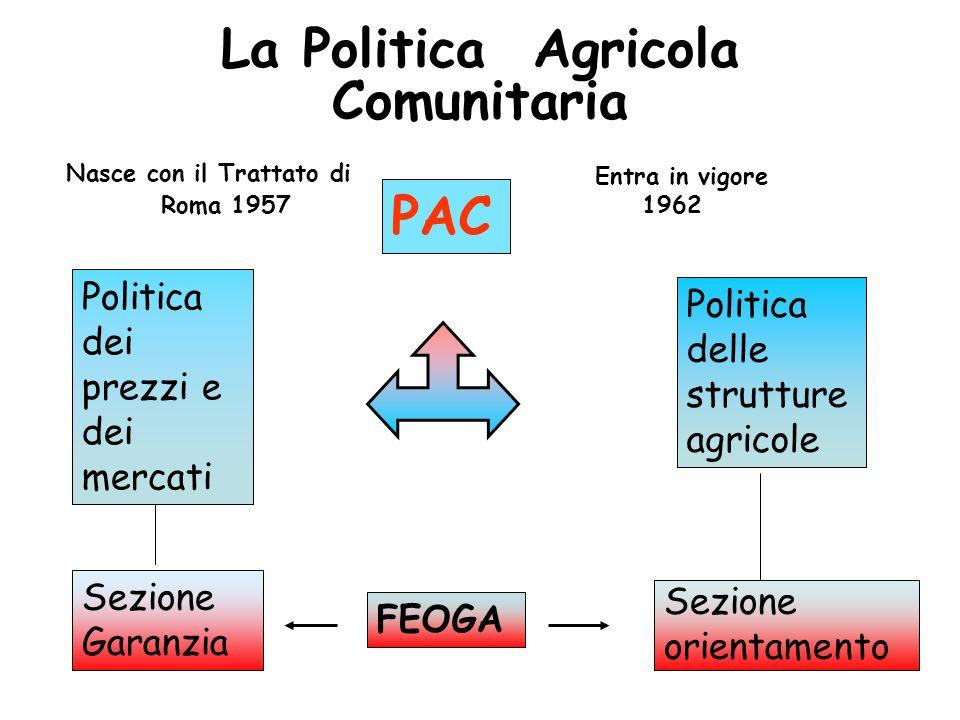 La Politica Agricola Comunitaria PAC Politica dei prezzi e dei mercati Politica delle strutture agricole Sezione Garanzia Sezione orientamento FEOGA N