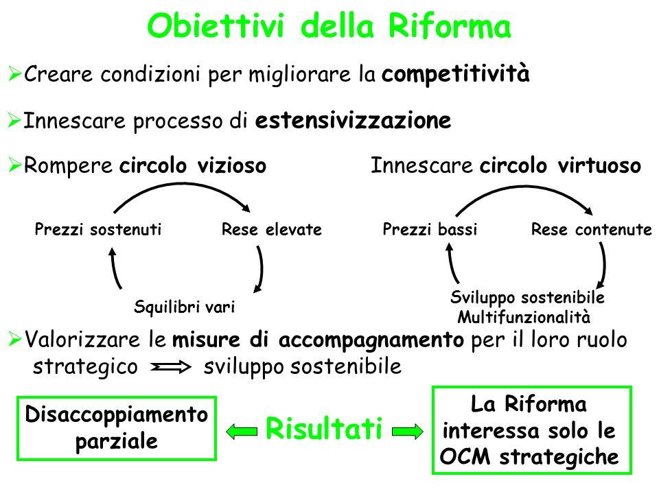 Obiettivi della Riforma Creare condizioni per migliorare la competitività Innescare processo di estensivizzazione Rompere circolo vizioso Innescare ci