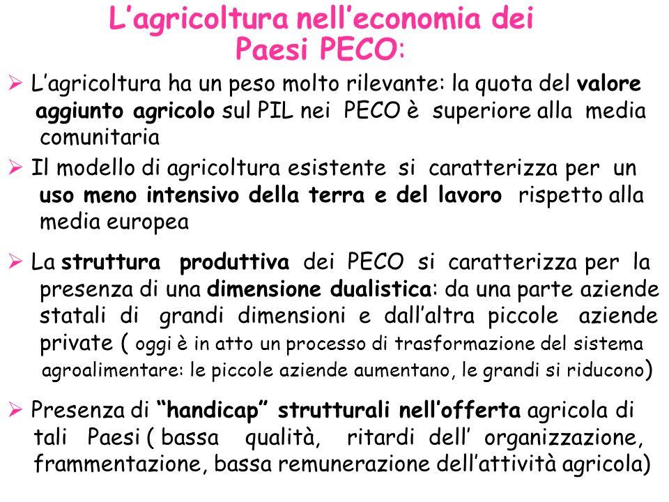 Lagricoltura nelleconomia dei Paesi PECO: Lagricoltura ha un peso molto rilevante: la quota del valore aggiunto agricolo sul PIL nei PECO è superiore