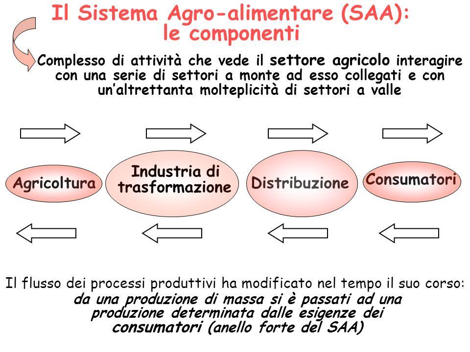 Il Sistema Agro-alimentare (SAA): le componenti Agricoltura Industria di trasformazione Distribuzione Consumatori Complesso di attività che vede il se