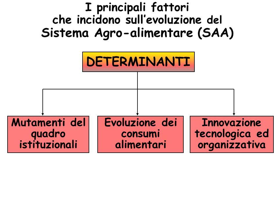 I principali fattori che incidono sullevoluzione del Sistema Agro-alimentare (SAA) DETERMINANTI Mutamenti del quadro istituzionali Evoluzione dei cons