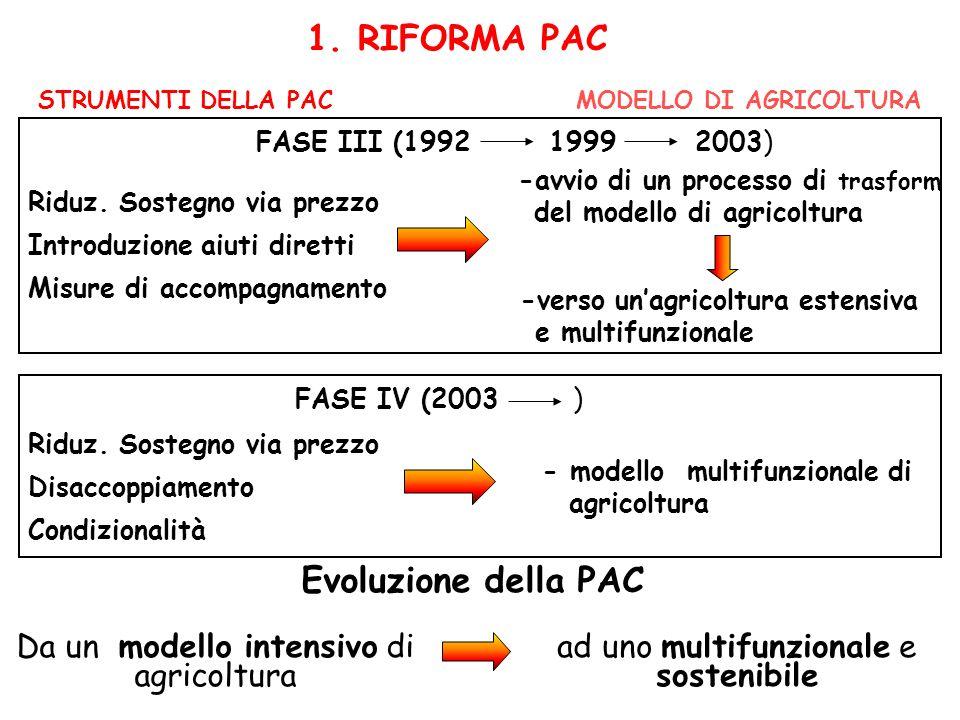 1. RIFORMA PAC STRUMENTI DELLA PACMODELLO DI AGRICOLTURA FASE IV (2003 ) FASE III (1992 1999 2003) -avvio di un processo di trasform ddel modello di a