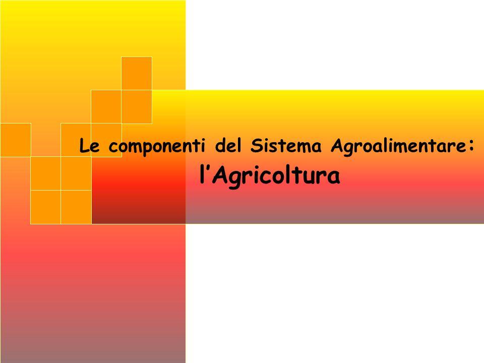 Le componenti del Sistema Agroalimentare : lAgricoltura