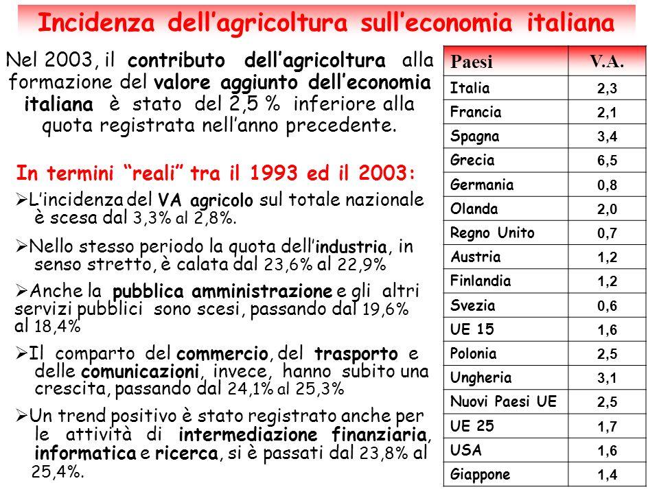 Le aziende agricole italiane dal 1960 in poi Contrazione delle unità produttive, prima nelle regioni settentrionali, poi nellItalia centro-meridionale Aziende di piccola dimensione (0-2 ha) Aziende di media dimensione (5-20 ha) Aziende di grande dimensione (oltre 50 ha) Leggera diminuzione Drastica riduzioneAumento si evidenziano due volti dellagricoltura