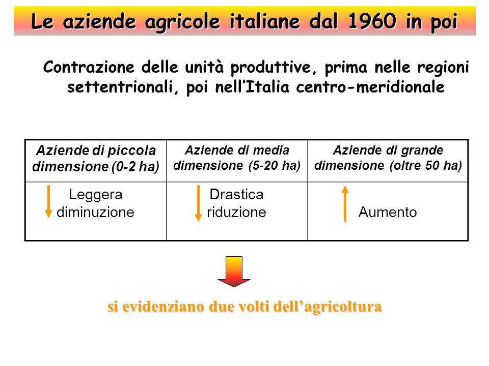 Persistenza di numerose micro-aziende e riduzione di quelle di grandi dimensioni Aziende di piccole dimensioni (<1 ha) Aziende di medie dimensioni Aziende di grandi dimensioni (oltre 100ha) Persistenza ( Aumento (1 - 20 ha) Forte aumento (30 - 100 ha) Drastica riduzione = Differenziazione netta tra il ruolo produttivo e quello sociale dellagricoltura Le aziende agricole italiane oggi