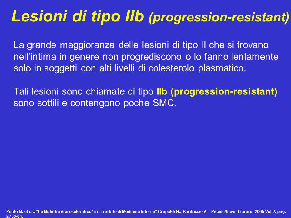 Lesioni di tipo IIb (progression-resistant) La grande maggioranza delle lesioni di tipo II che si trovano nellintima in genere non progrediscono o lo