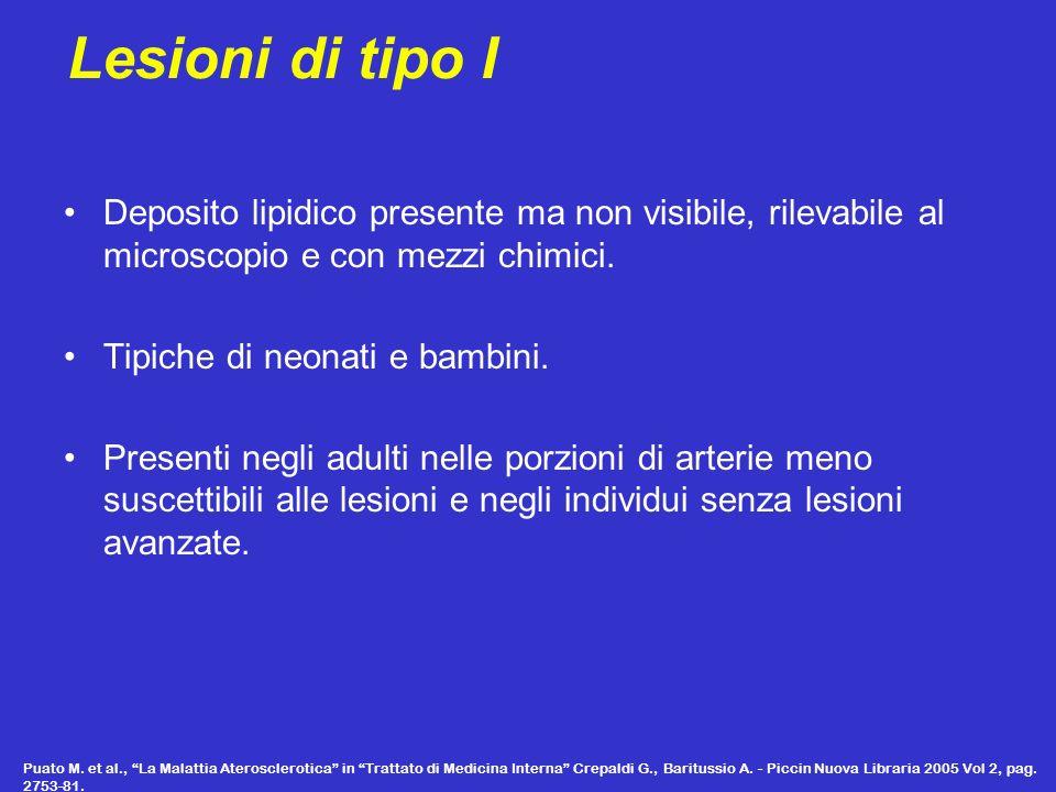 Lesioni di tipo I Deposito lipidico presente ma non visibile, rilevabile al microscopio e con mezzi chimici. Tipiche di neonati e bambini. Presenti ne