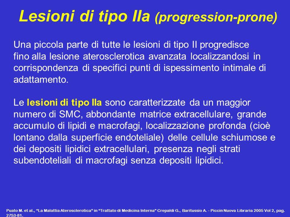 Lesioni di tipo IIb (progression-resistant) La grande maggioranza delle lesioni di tipo II che si trovano nellintima in genere non progrediscono o lo fanno lentamente solo in soggetti con alti livelli di colesterolo plasmatico.