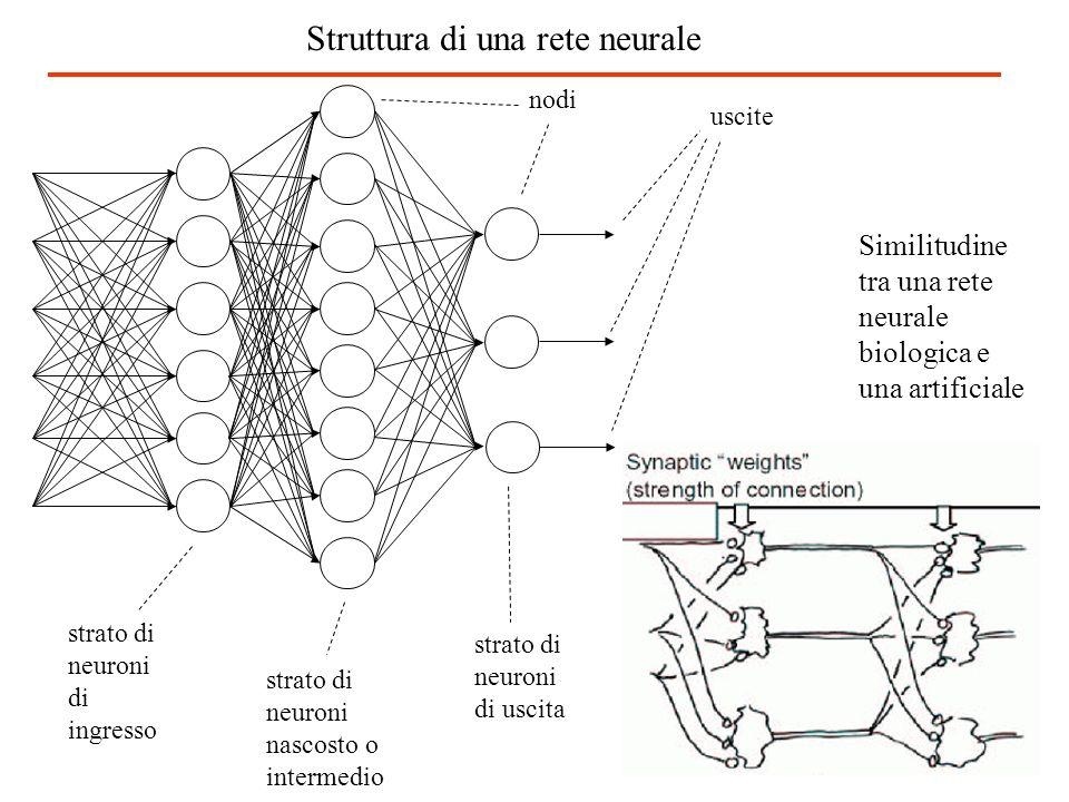strato di neuroni di ingresso strato di neuroni nascosto o intermedio strato di neuroni di uscita uscite Similitudine tra una rete neurale biologica e