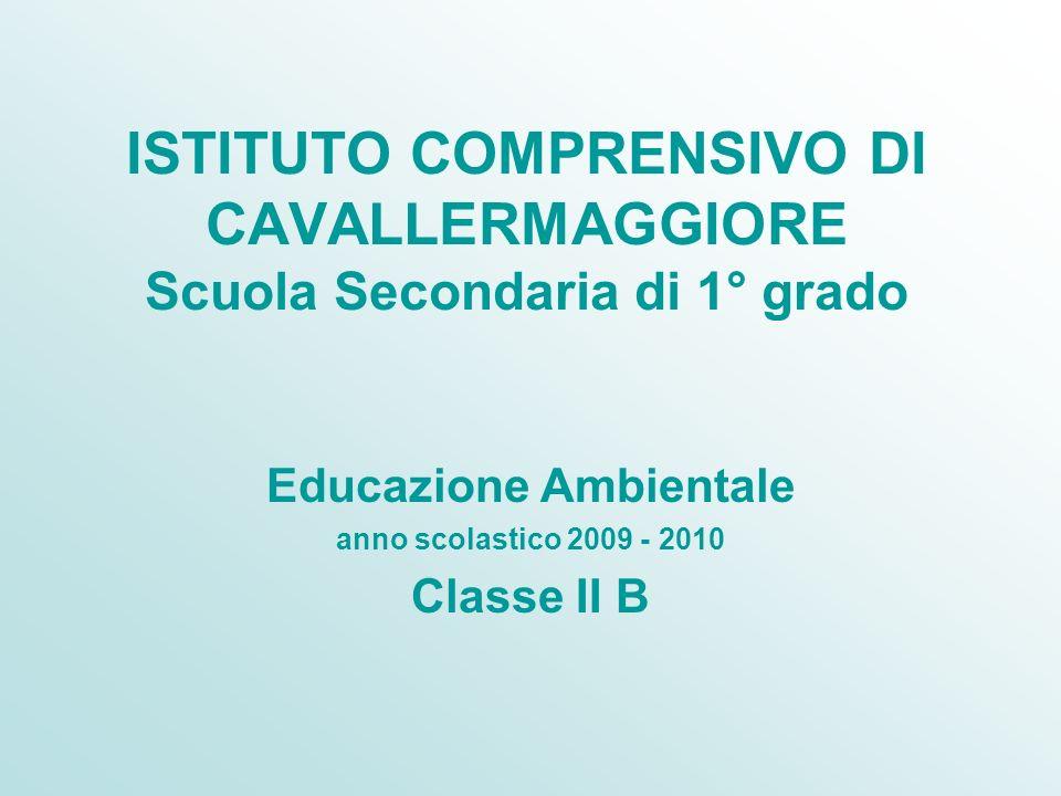 ISTITUTO COMPRENSIVO DI CAVALLERMAGGIORE Scuola Secondaria di 1° grado Educazione Ambientale anno scolastico 2009 - 2010 Classe II B