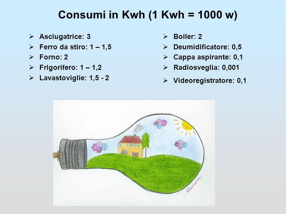 Consumi in Kwh (1 Kwh = 1000 w) Asciugatrice: 3 Ferro da stiro: 1 – 1,5 Forno: 2 Frigorifero: 1 – 1,2 Lavastoviglie: 1,5 - 2 Boiler: 2 Deumidificatore: 0,5 Cappa aspirante: 0,1 Radiosveglia: 0,001 Videoregistratore: 0,1