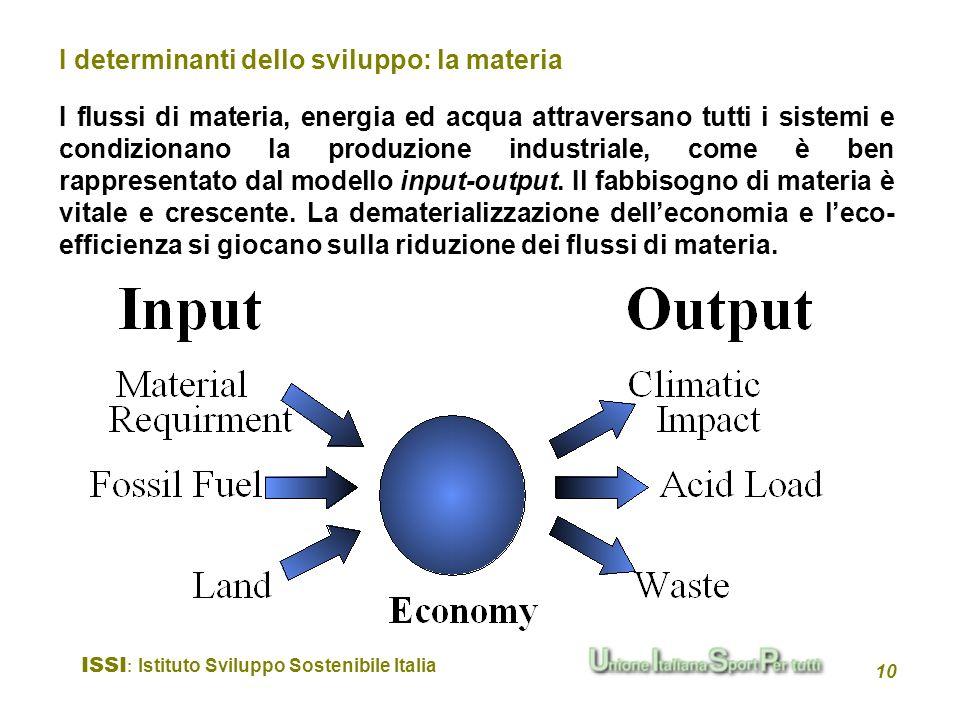 ISSI : Istituto Sviluppo Sostenibile Italia 10 I determinanti dello sviluppo: la materia I flussi di materia, energia ed acqua attraversano tutti i si