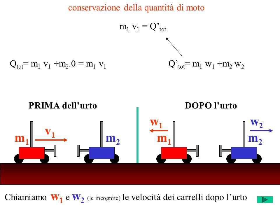 Chiamiamo w 1 e w 2 (le incognite) le velocità dei carrelli dopo lurto m2m2 v1v1 m1m1 m2m2 w1w1 m1m1 w2w2 PRIMA dellurtoDOPO lurto conservazione della quantità di moto Q tot = m 1 v 1 +m 2.0 = m 1 v 1 Q tot = m 1 w 1 +m 2 w 2 m 1 v 1 = Q tot