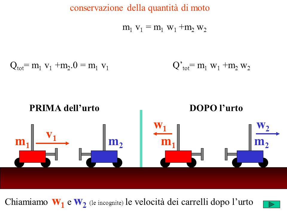 Chiamiamo w 1 e w 2 (le incognite) le velocità dei carrelli dopo lurto m2m2 v1v1 m1m1 m2m2 w1w1 m1m1 w2w2 PRIMA dellurtoDOPO lurto conservazione della quantità di moto Q tot = m 1 v 1 +m 2.0 = m 1 v 1 Q tot = m 1 w 1 +m 2 w 2 m 1 v 1 = m 1 w 1 +m 2 w 2