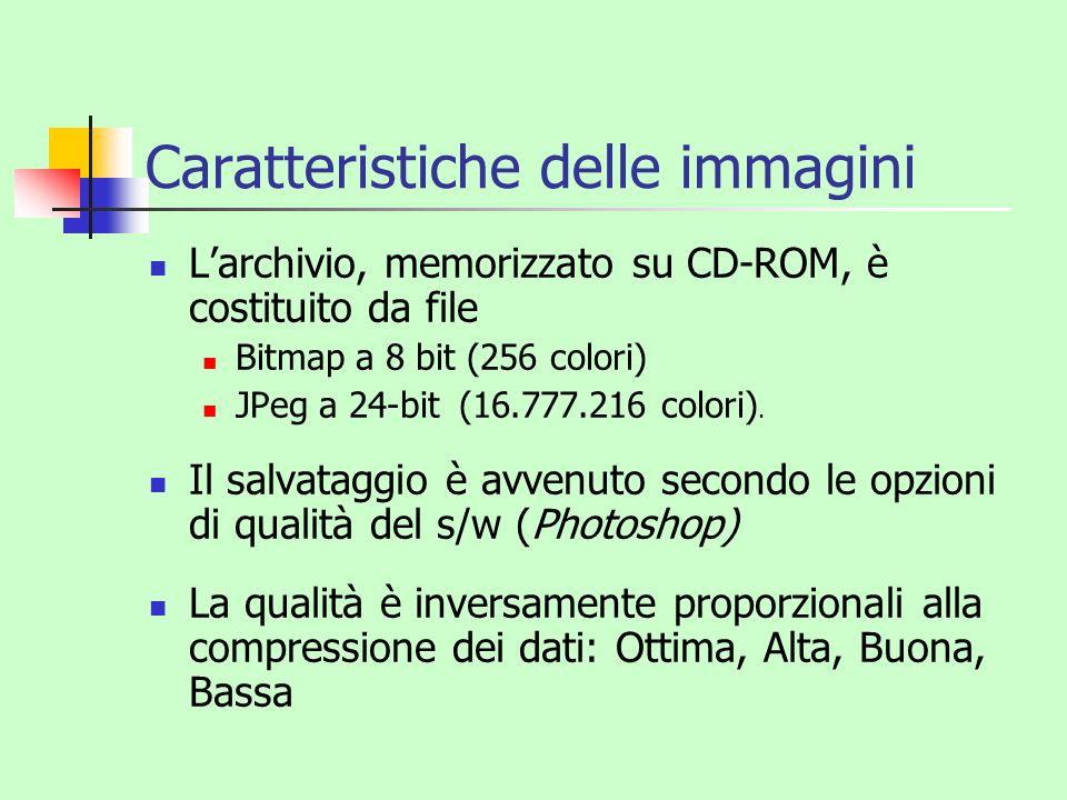 Caratteristiche delle immagini Larchivio, memorizzato su CD-ROM, è costituito da file Bitmap a 8 bit (256 colori) JPeg a 24-bit (16.777.216 colori). I