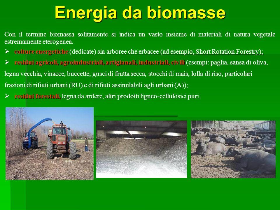 Energia da biomasse Con il termine biomassa solitamente si indica un vasto insieme di materiali di natura vegetale estremamente eterogenea. colture en