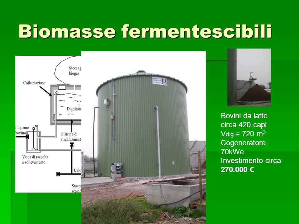 Biomasse fermentescibili Bovini da latte circa 420 capi V dig = 720 m 3 Cogeneratore 70kWe Investimento circa 270.000