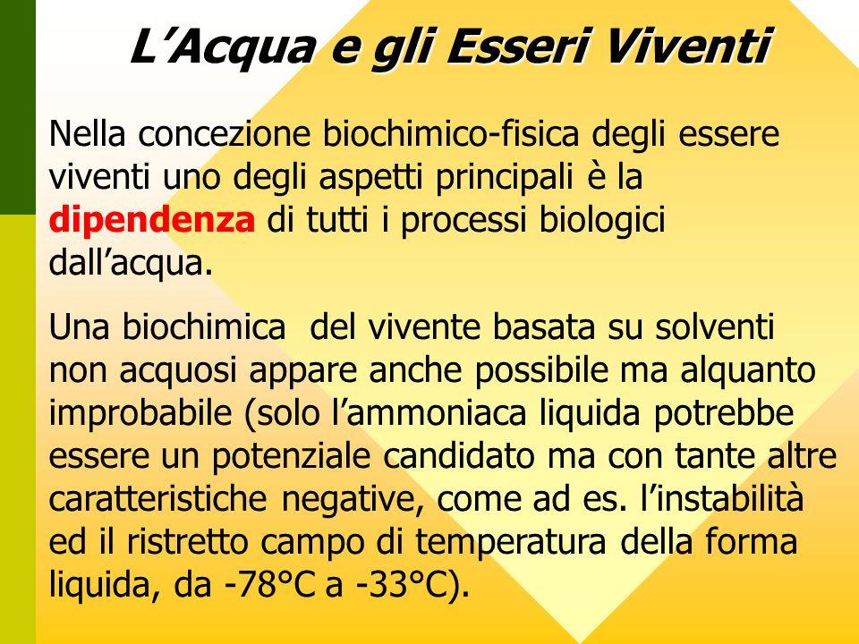 Nella concezione biochimico-fisica degli essere viventi uno degli aspetti principali è la dipendenza di tutti i processi biologici dallacqua. Una bioc