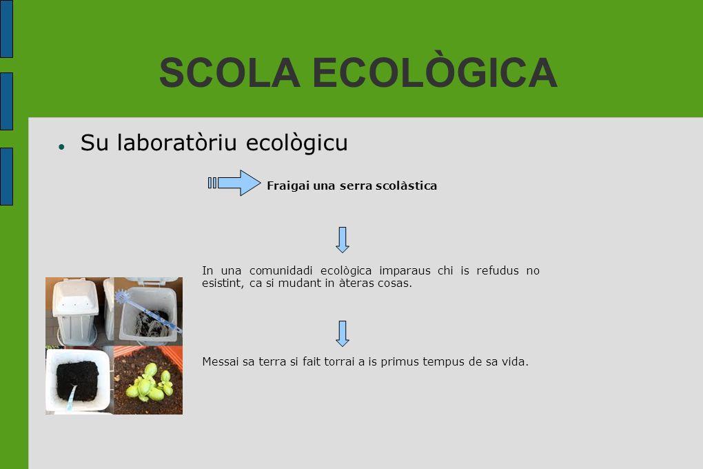 SCOLA ECOLÒGICA Su laboratòriu ecològicu Fraigai una serra scolàstica In una comunidadi ecològica imparaus chi is refudus no esistint, ca si mudant in