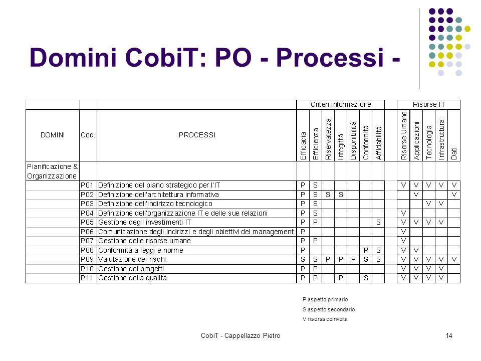 CobiT - Cappellazzo Pietro14 Domini CobiT: PO - Processi - P aspetto primario S aspetto secondario V risorsa coinvolta