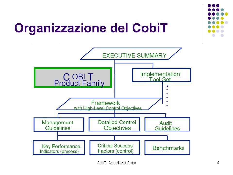 CobiT - Cappellazzo Pietro5 Organizzazione del CobiT