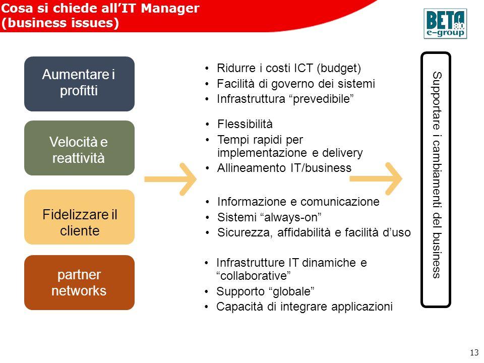 13 Cosa si chiede allIT Manager (business issues) Aumentare i profitti Ridurre i costi ICT (budget) Facilità di governo dei sistemi Infrastruttura pre
