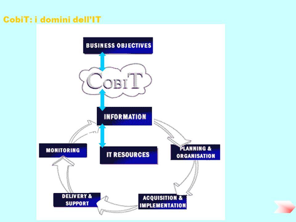 CobiT: i domini dellIT