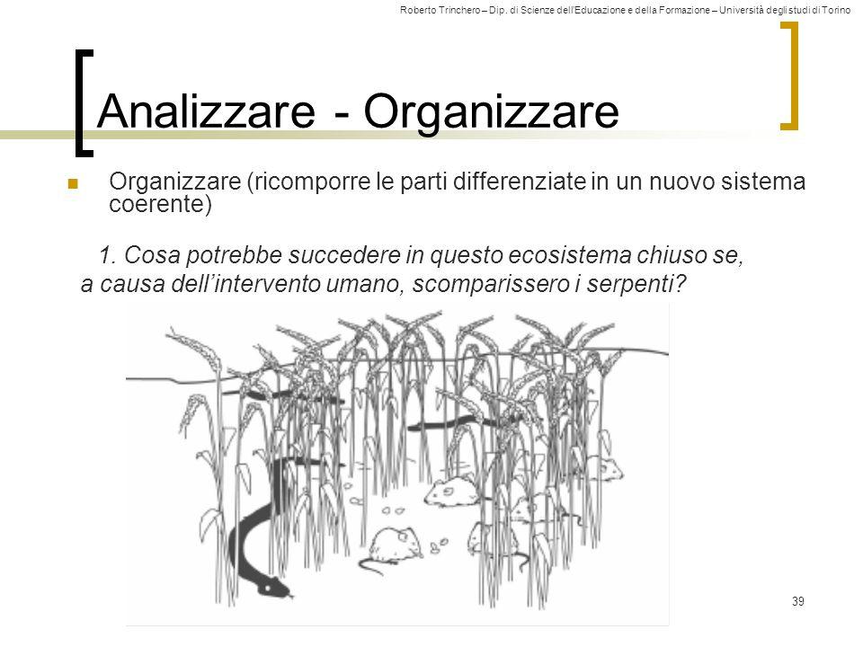 Roberto Trinchero – Dip. di Scienze dellEducazione e della Formazione – Università degli studi di Torino 39 Analizzare - Organizzare Organizzare (rico