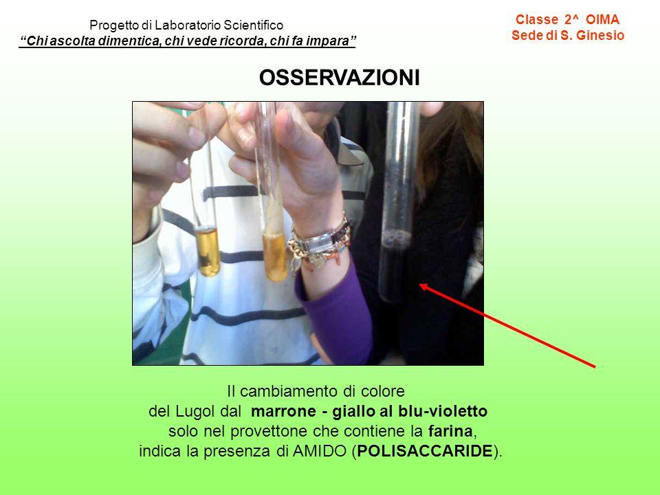 OSSERVAZIONI Il cambiamento di colore del Lugol dal marrone - giallo al blu-violetto solo nel provettone che contiene la farina, indica la presenza di