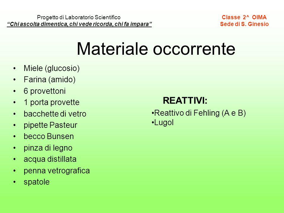Materiale occorrente Miele (glucosio) Farina (amido) 6 provettoni 1 porta provette bacchette di vetro pipette Pasteur becco Bunsen pinza di legno acqu