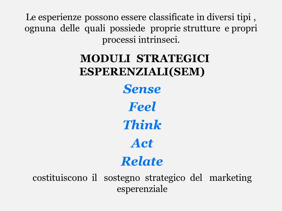 Le esperienze possono essere classificate in diversi tipi, ognuna delle quali possiede proprie strutture e propri processi intrinseci. MODULI STRATEGI