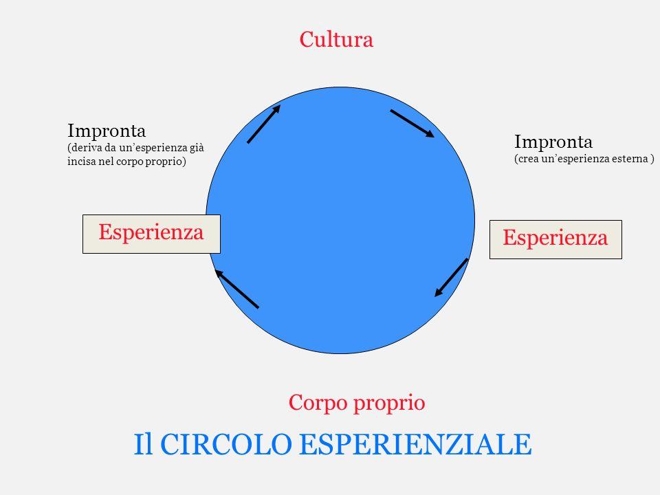 Il CIRCOLO ESPERIENZIALE Esperienza Cultura Corpo proprio Impronta (deriva da unesperienza già incisa nel corpo proprio) Impronta (crea unesperienza e