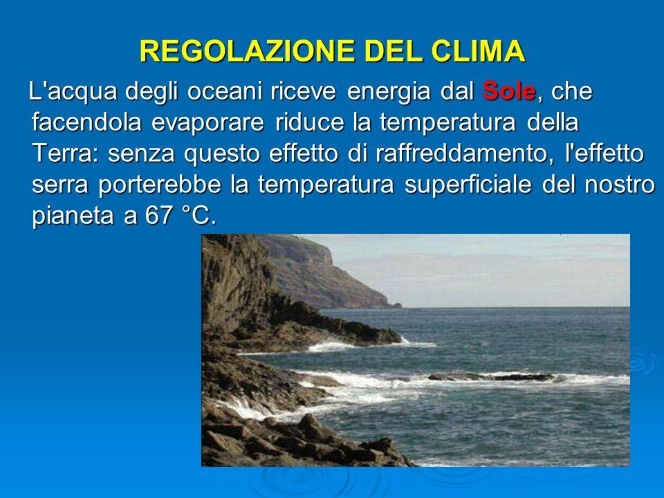 REGOLAZIONE DEL CLIMA L'acqua degli oceani riceve energia dal Sole, che facendola evaporare riduce la temperatura della Terra: senza questo effetto di