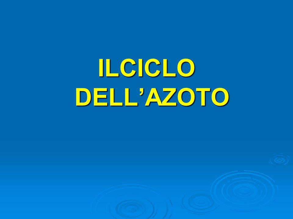 ILCICLO DELLAZOTO