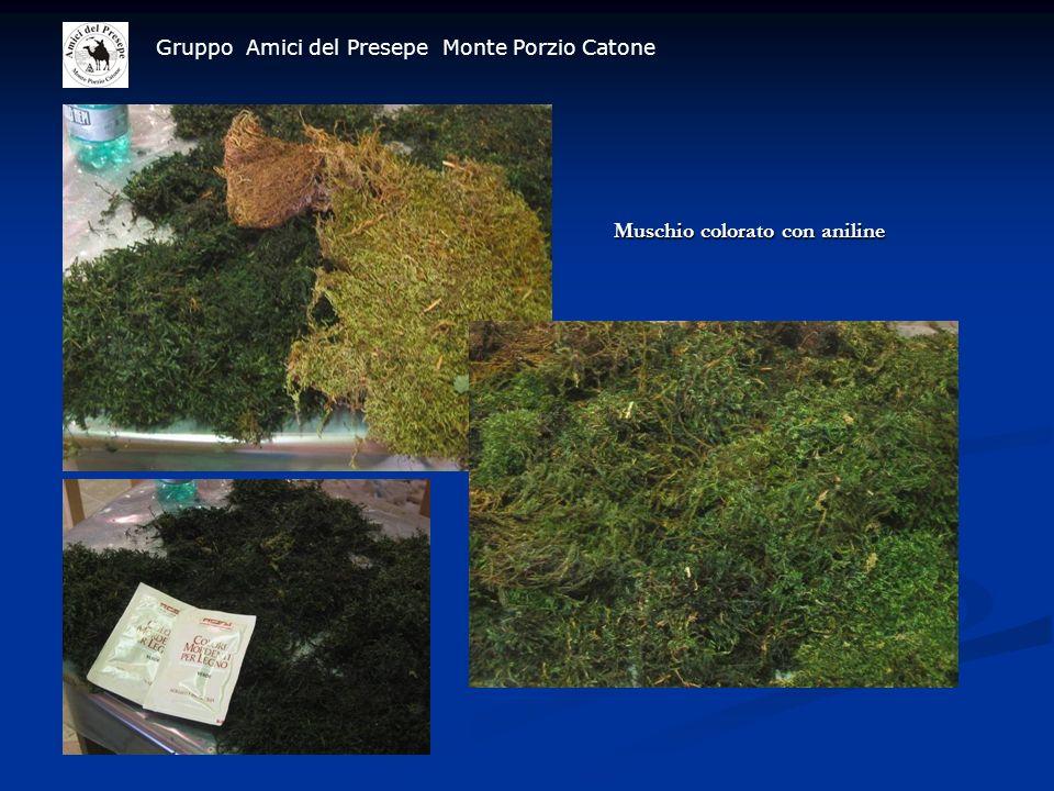 Gruppo Amici del Presepe Monte Porzio Catone Muschio colorato con aniline