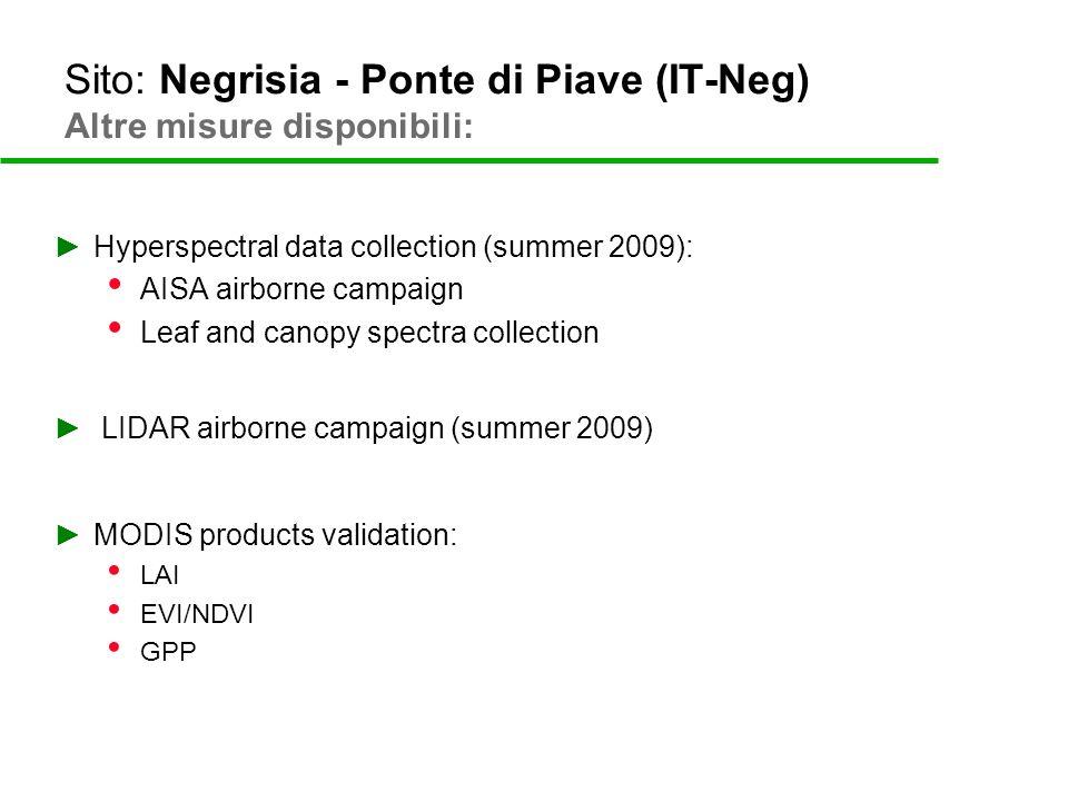 Sito: Negrisia - Ponte di Piave (IT-Neg) Carbon Budget
