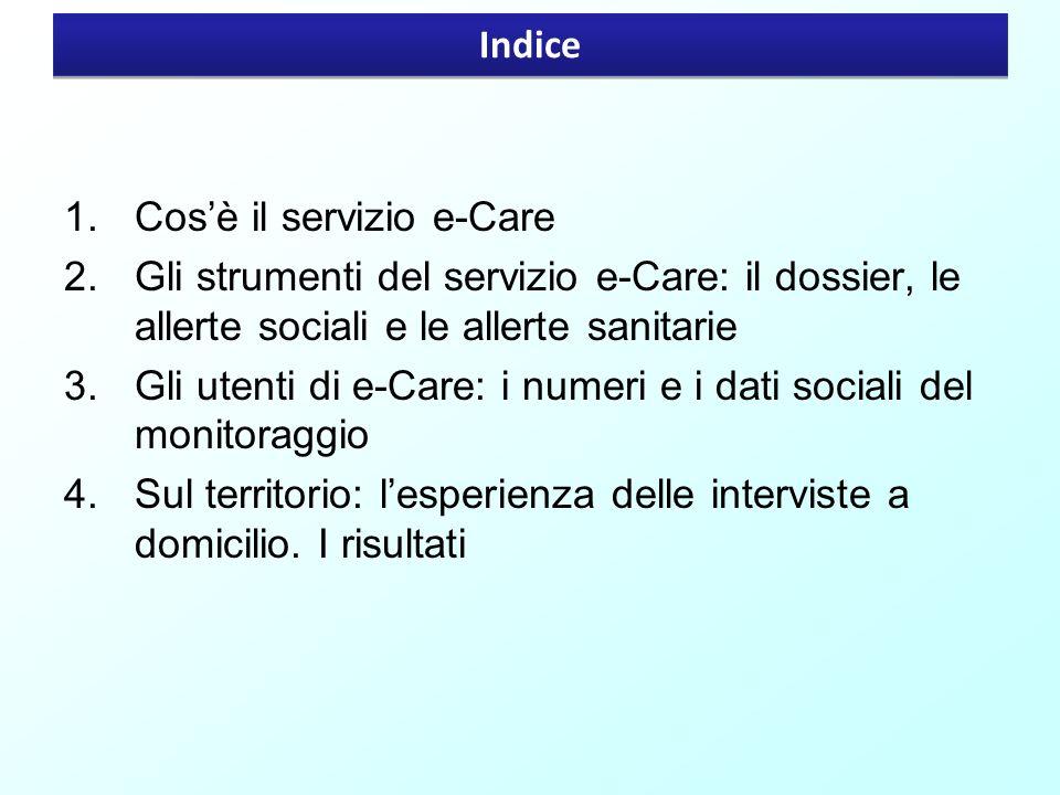 Indice 1.Cosè il servizio e-Care 2.Gli strumenti del servizio e-Care: il dossier, le allerte sociali e le allerte sanitarie 3.Gli utenti di e-Care: i