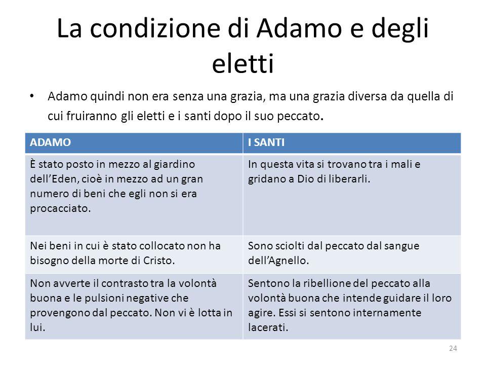 La condizione di Adamo e degli eletti Adamo quindi non era senza una grazia, ma una grazia diversa da quella di cui fruiranno gli eletti e i santi dop