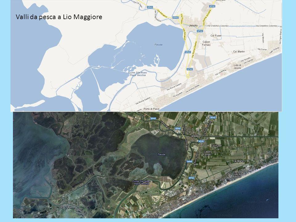Valli da pesca a Lio Maggiore