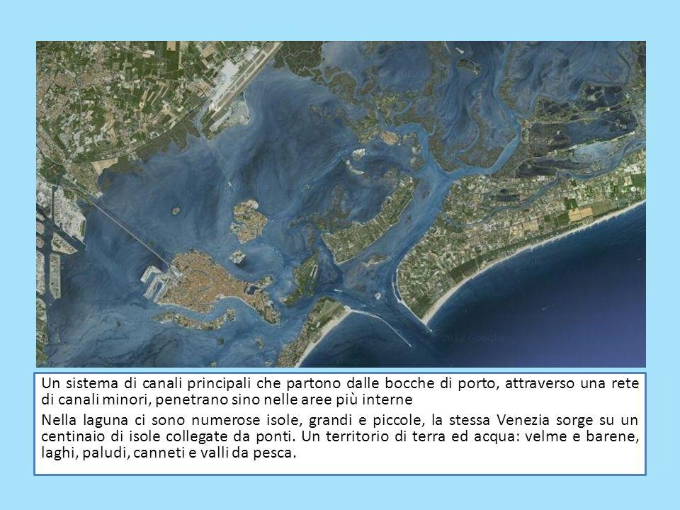 Un sistema di canali principali che partono dalle bocche di porto, attraverso una rete di canali minori, penetrano sino nelle aree più interne Nella l