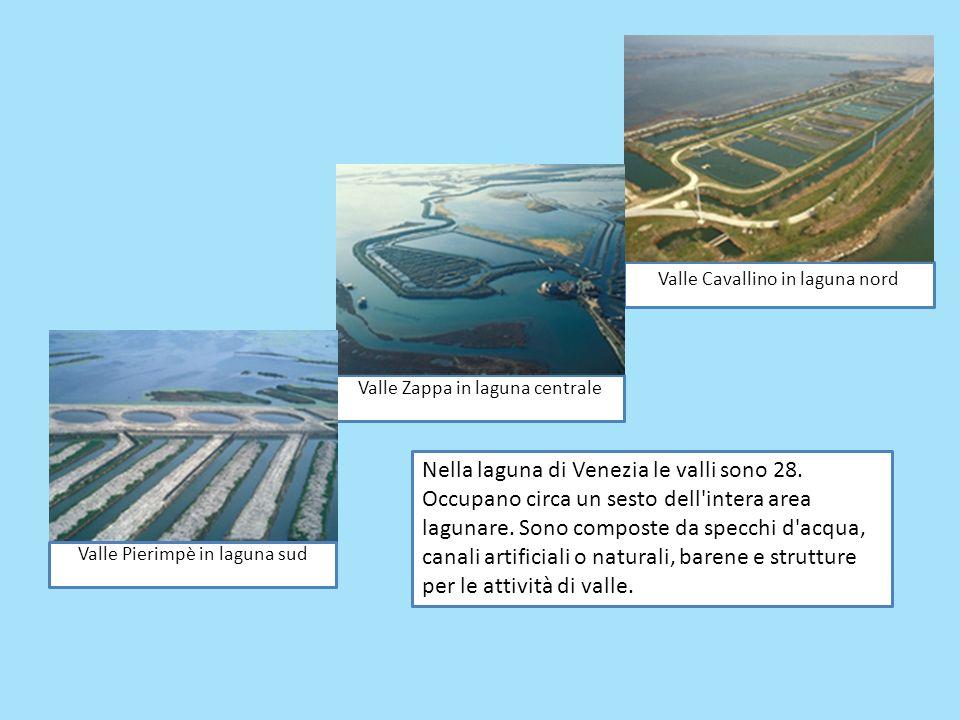 Valle Cavallino in laguna nord Valle Zappa in laguna centrale Valle Pierimpè in laguna sud Nella laguna di Venezia le valli sono 28. Occupano circa un