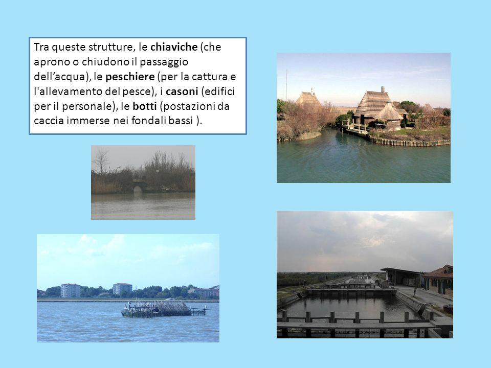 Tra queste strutture, le chiaviche (che aprono o chiudono il passaggio dellacqua), le peschiere (per la cattura e l'allevamento del pesce), i casoni (