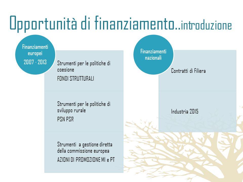 Opportunità di finanziamento.. introduzione Strumenti per le politiche di coesione FONDI STRUTTURALI Strumenti per le politiche di sviluppo rurale PSN