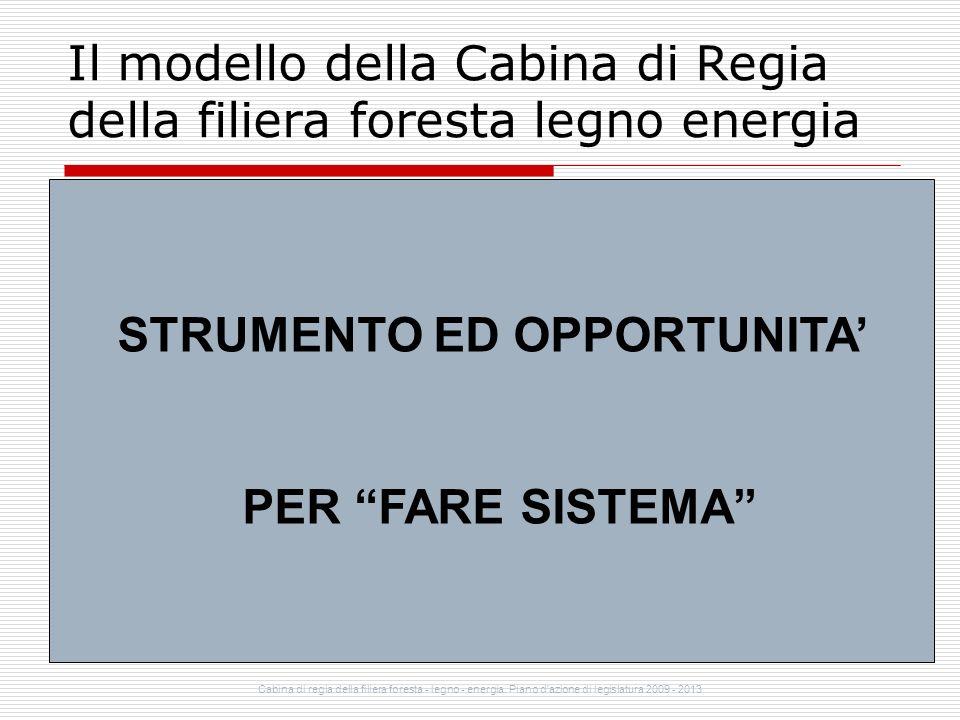 Cabina di regia della filiera foresta - legno - energia. Piano d'azione di legislatura 2009 - 2013 Il modello della Cabina di Regia della filiera fore