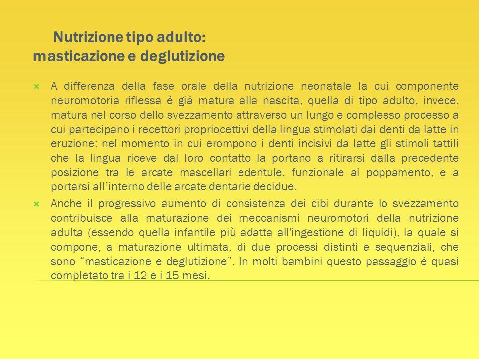 Nutrizione tipo adulto: masticazione e deglutizione A differenza della fase orale della nutrizione neonatale la cui componente neuromotoria riflessa è