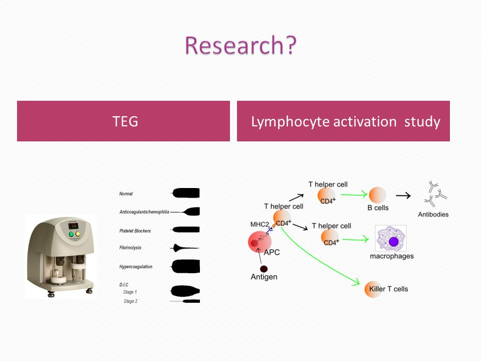 TEGLymphocyte activation study