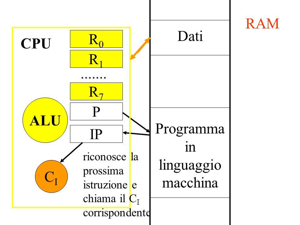 Dati Programma in linguaggio macchina RAM P IP CICI CPU R0R0....... ALU riconosce la prossima istruzione e chiama il C I corrispondente R1R1 R7R7